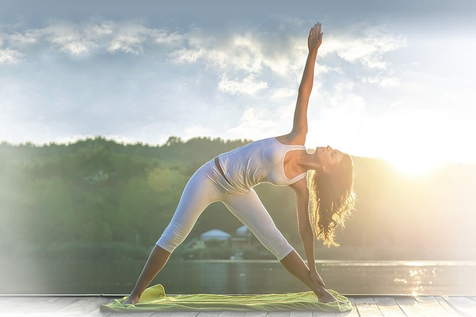 Интенсив по системе Yoga Vidya с Кешавой Шутцем (Германия) 4-11 августа